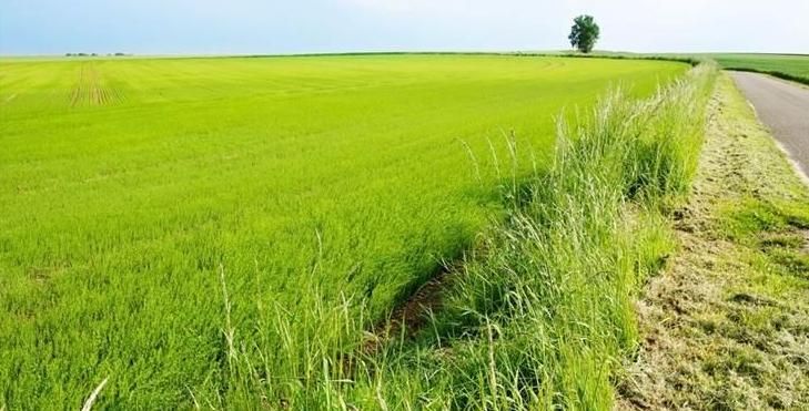 Comment Vendre Un Terrain Agricole Vendre Son Terrain